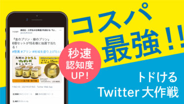 依頼額5万円で100万円の広告効果?!コスパ最強新サービス『トドけるTwitter大作戦』